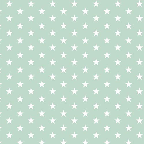 babrause® Baumwollstoff Sternchen Mint Webware Meterware Popeline OEKOTEX 150cm breit - Ab 0,5 Meter
