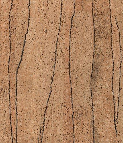 VersaCork Korkstoff/Korkleder: Div. Designs, Möbelbezug, Kissenbezug, Bezugsstoff, Lenkradbezug, veganes Leder (div. Größen) (35x25, Cactus)